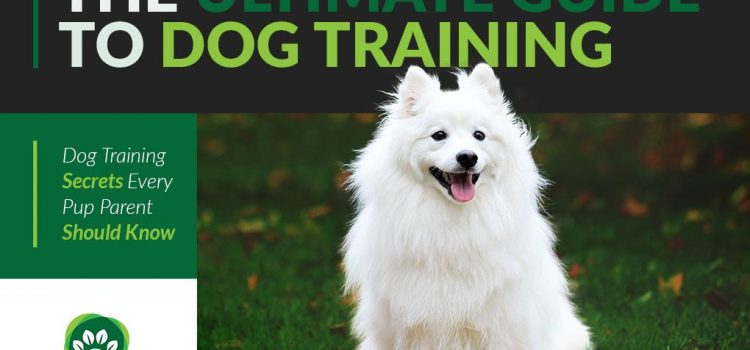 THE ULTIMATE GUIDE TO DOG TRAINING: DOG TRAINING SECRETS EVERY PUP PARENT SHOULD KNOW